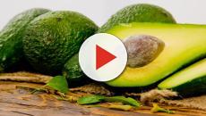 Estudo publicado na revista 'Scielo' mostra benefícios do abacate para a saúde