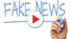 Facebook: una limitazione della libertà di espressione la rimozione di fake news