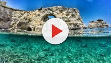 Mar Mediterraneo, aumentano i contatti con le meduse, le precauzioni da usare