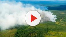 Una histórica ola de calor en Suecia deja una terrible oleada de incendios