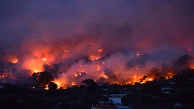 La Grecia avvolta dalle fiamme: 50 morti e centinaia di case distrutte