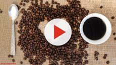 Entenda como o selo de qualidade ajuda a melhorar o café brasileiro