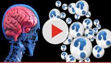 Vitória da ciência brasileira: neurônios de proveta que sentem dor