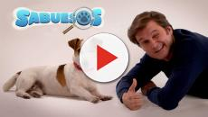 'VIDEO:Sabuesos', serie familiar de La 1 TVE protagonizada por un perro