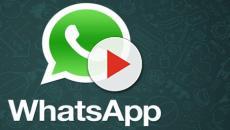Whatsapp apre alle inserzioni pubblicitarie, novità per la versione 'Business'