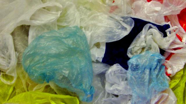Chile leads Latin America in banning the use of commercial plastic bags