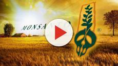 Monsanto pagará 289 millones de dólares por multa de sus herbicidas dañinas