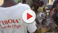 Vídeo: 11 muertes confirmadas en nuevo brote de ébola del Congo