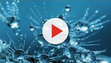 México/ Nueva técnica para detectar metales en el agua: levitación y luz láser