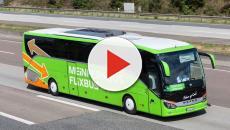 ALEMANIA/ Un autobús se estrella con 63 personas a bordo