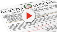 Il Decreto Dignità è legge, le novità introdotte per i diplomati magistrale
