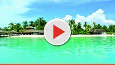 Se busca librero para hotel de lujo en las Maldivas