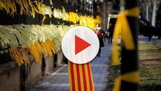 Lazos amarillos: un problema que enfrenta a la población