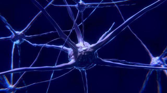 Neuroni che si scambiano i messaggi: una nuova tecnica per osservarli