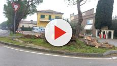 Lieve scossa di terremoto a Sant'Orsola di Trento, magnitudo 2.4