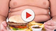 10 alimentos que não devemos comer jamais