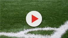 Campionato serie C 2018/2019: Camilli esprime il suo sdegno per la Viterbese