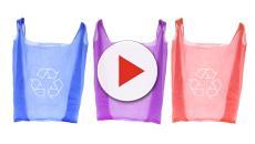 Sacchetti di plastica BIO: potrebbero costare fino a 90 € all'anno per famiglia