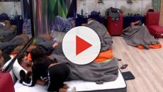 Vídeo: El primer edredoning en la casa de Guadalix