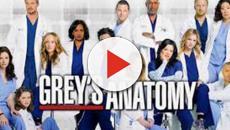 Grey's Anatomy: la 16^ stagione potrebbe essere l'ultima