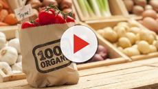 VIDEO: Los ciudadanos suizos decidirán en referéndum por la comida orgánica