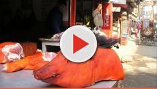 Francia, è guerra tra vegani e macellai: assunti vigilanti per tutelare le carni