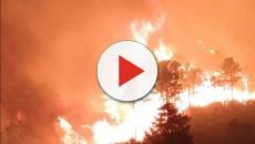 Incendio Monte Serra, i cittadini possono rientrare in casa