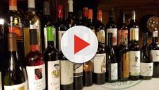 VÍDEO: Cinco formas de identificar un buen vino