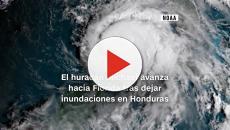 VÍDEO: El huracán Michael toca tierra en Florida