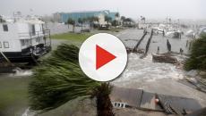 L'Ouragan Micheal dévaste la Floride
