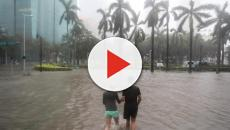 La Floride en état de siège à cause de l'ouragan Michaël