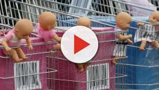 Utero in affitto, la 'campagna contro' del Movimento Pro Vita
