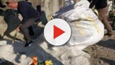 Salce, genero scava per seppellire la suocera: non c'erano i dipendenti comunali