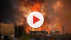 Savona, bagnino denunciato con l'accusa di incendio boschivo