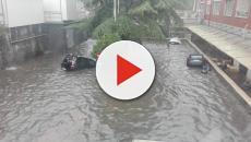 Fortissime piogge sulla Sicilia: gente bloccata sui tetti delle case