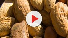 Check out how people reacted to the fact that it is national nut day