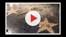Austin Clay copped a plea for vandalism against Donald Trump's Hollywood star
