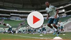 Palmeiras cogita usar jogadores sub-20 no Paulistão