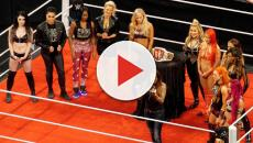Women's superstar could make WWE main roster debut at Survivor Series 2018