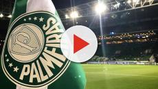 Palmeira segue no topo da tabela no Campeonato Brasileiro 2018