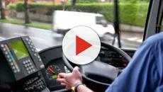 Mestre, molestano ragazze e picchiano l'autista del bus: identificati