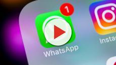 WhatsApp, arriva la pubblicità nell'upgrade 2019