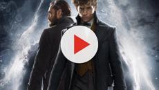 Animali Fantastici 2: gli errori rispetto ai film di Harry Potter