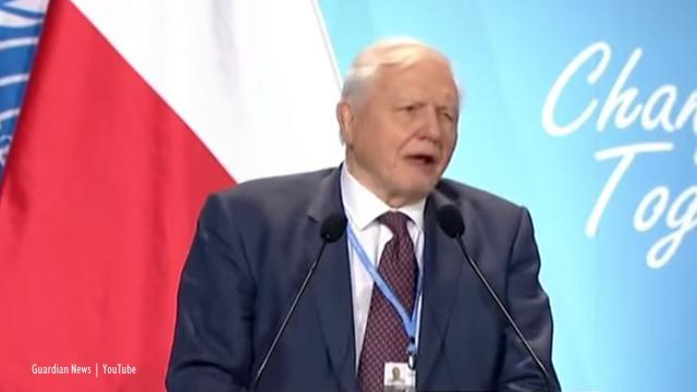 Poland, Katowice: COP 24 sees David Attenborough address the conference