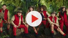 I'm a Celebrity: Who's left the jungle