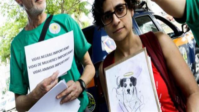 Morte de cachorro agredido por funcionário gera revolta