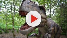 Australia: straordinaria scoperta scientifica, da oggi c'è un nuovo dinosauro