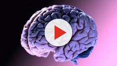 Neurofibromatosi: Uno studio ha rilevato nuove cure dalla mappatura del cervello