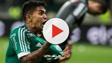 Torcida do Palmeiras se revolta contra a Vivo
