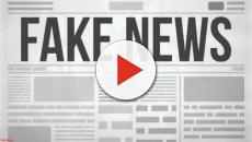 As falsas informações não correlacionam estritamente a uma extremidade política